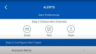 Webster Bank mobile app account alerts